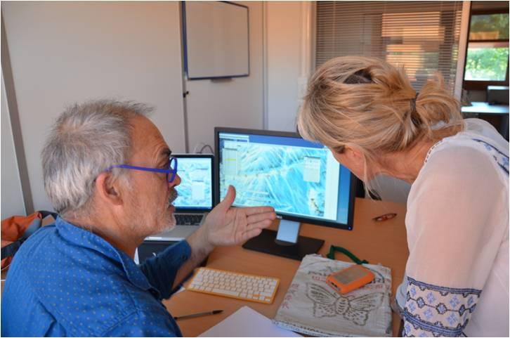 Analyse qualitative de l'activité expert entretien avec expert-artiste Arthur Novat